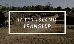 inter island transport